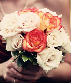 Super Premium Roses
